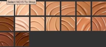 mac pro longwear nourishing foundation color chart