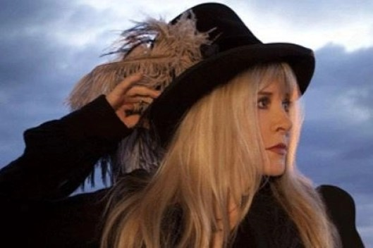 stevie nicks in a top hat
