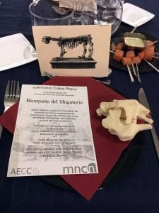 Detalle del menú, la tarjeta y el cráneo impreso en 3D de megaterio.