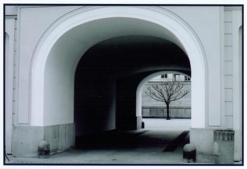 Barren Courtyard