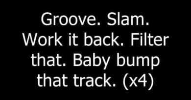 Lady Gaga – Starstruck feat. Flo Rida