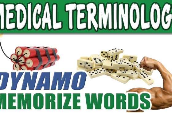 Medical Terminology COURSE Dictionary List Dynamo