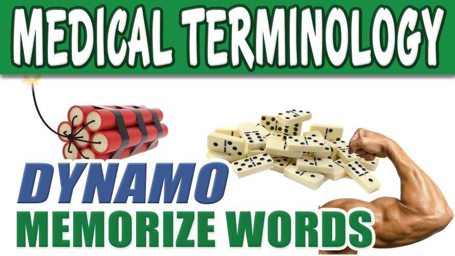 Medical Terminology – DYNAMO