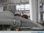 PAMA-SP09-F5-jordania6