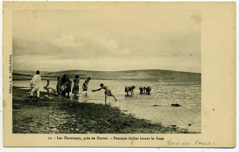 Haramaya Michel 1912