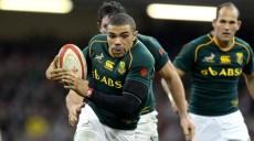 coupe-du-monde-de-rugby-2015-afrique-du-sud
