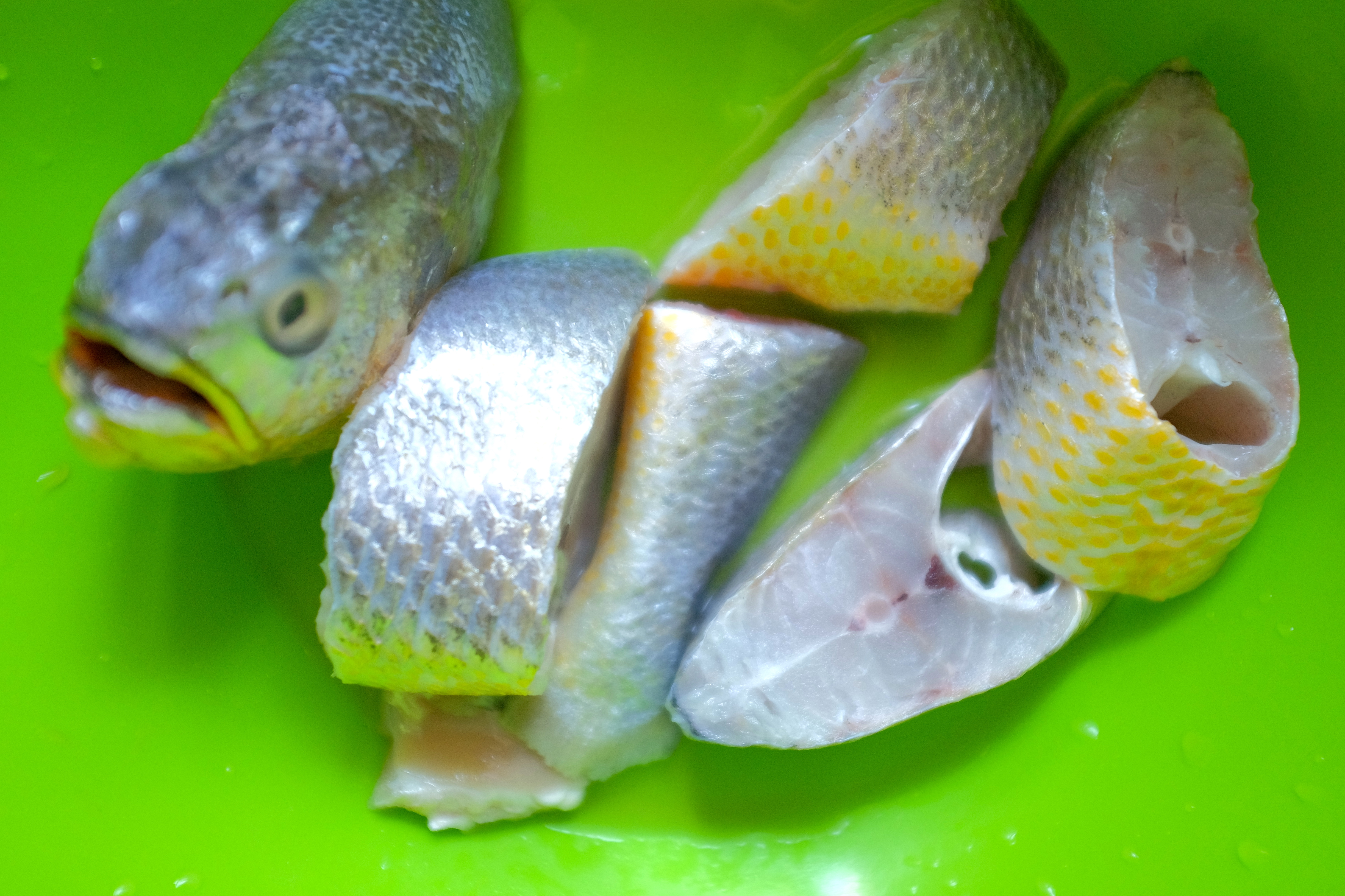 Nigerian fish stew afrolems nigerian food blog for Croaker fish recipe