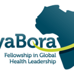 AfyaBora Fellowship in Global Health Leadership for African Medical Practitioners