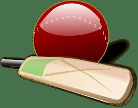 cricket-150561_1280