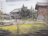 承天禅寺の庭