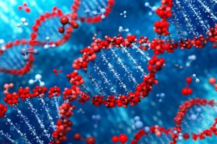 <p>Las enfermedades mendelianas se producen por mutaciones genéticas en el paso de ADN entre padres e hijos. / Fotolia.</p>