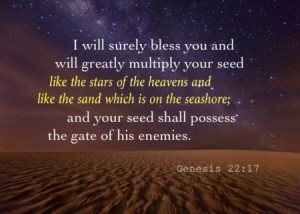 Genesis 22:17 I will surely bless you and will greatly multiply your seed like the stars of the heavens and like the sand which is on the seashore; and your seed shall possess the gate of his enemies.
