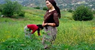 Conférence sur la question paysanne dans les pays du Maghreb en France