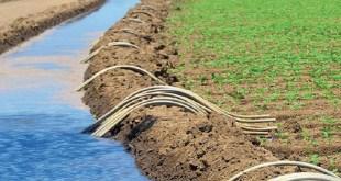 Création de l'association professionnelle des conseillers agricoles de la région Casablanca-Settat
