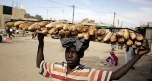 Un nouveau réseau lancé par la FAO, le PAM et l'UE