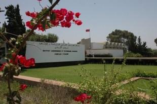 Agadir : Journée d'information sur Tuta Absoluta