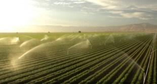 PPP: Étude d'évaluation du système d'irrigation à El Guerdane