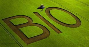 L'UE s'oriente vers une règlementation de l'agriculture biologique