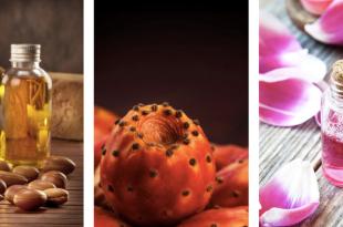 Carrefour: Un nouveau point de distribution des produits agricoles du terroir