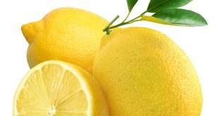 Chute des superficies de citrons en Espagne