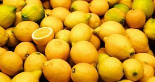 L'Argentine est le plus gros producteur mondial de citrons