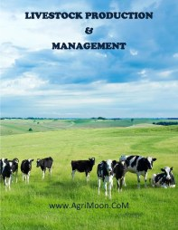 LIVESTOCK PRODUCTION1