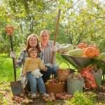Corrientes agroecológicas: LA AGRICULTURA NATURAL