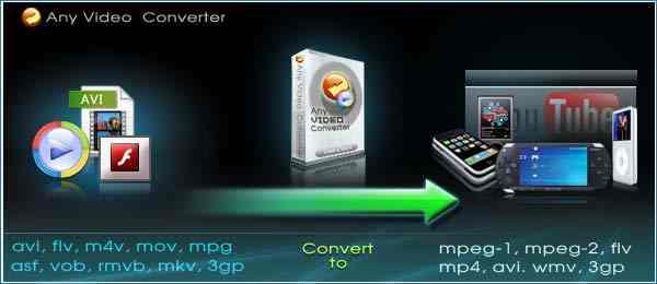 Any Video Converter 5.6.6
