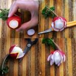 طرق تزيين الطعام بالخضار