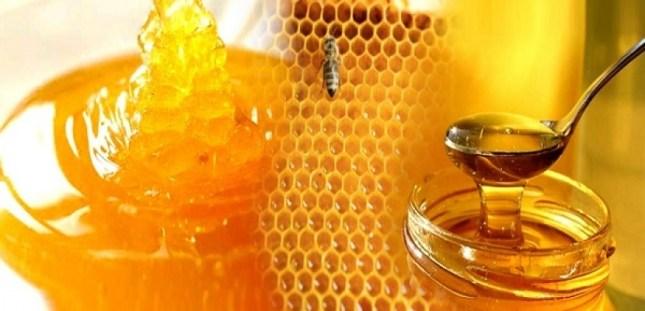 مركبات العسل