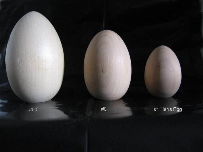 طريقة فحص البيض الفاسد والطازج بسهولة