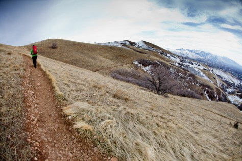 Hiking along a trail in the foothills above Salt Lake City, just before winter.
