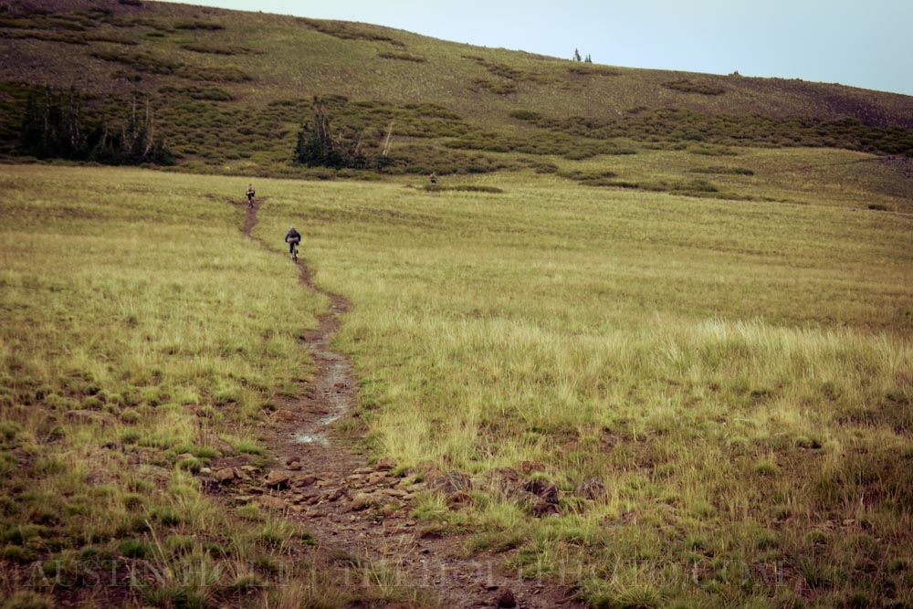 Skiers Shaun Raskin and Weston Deutschlander ride mountain bikes in Brian Head, Utah on a stormy day. This all-mountain and cross country trail is called Bunker creek.