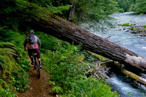 Austin Holt riding a bike on the McKenzie River Trail in Oregon
