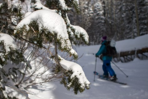 Re Wikstrom tours into some backcountry skiing in Big Cottonwood Canyon, Utah.