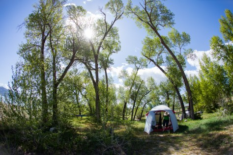 Re emerges from our Stoic family tent on the shore of Bear Lake in Utah. Trees tower over the site and the midday sun peeks through the branches.