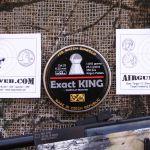 Hatsan Mod 125 Sniper .25 cal - 10 Yard Shot Cards