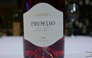 Proelio Rosado 2015 TOP 5 Mejores Vinos Rosados de España 2016 Ranking AkataVino