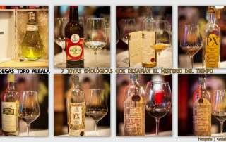 Collage Cata Toro Albala 7 Joyas Enologicas © akataVino
