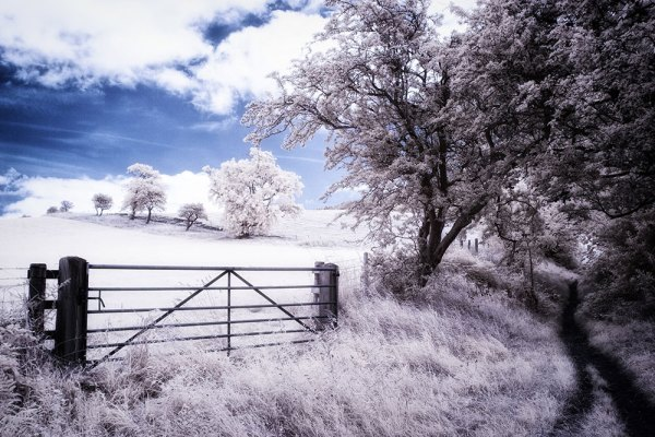 Yorkshire Moors Infrared