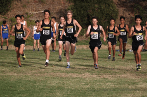 The men's cross country team, photo courtesy of Scott Rowe