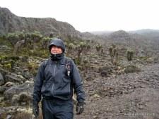 The Rains of Kilimanjaro