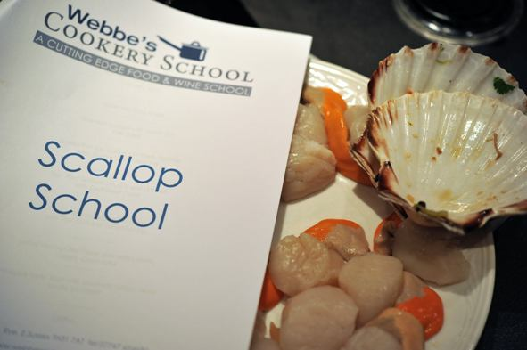 scallopschool