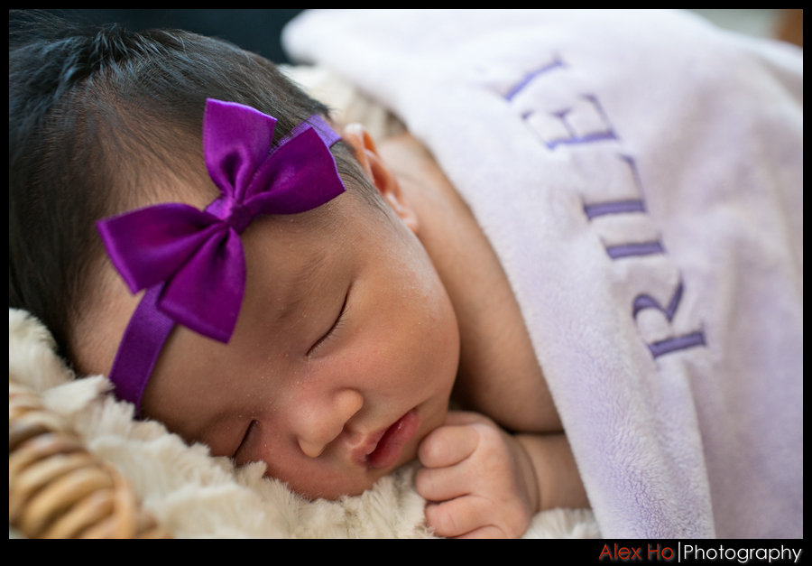 sleeping Newborn Baby Riley Portraits