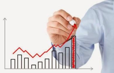 As pequenas empresas de alto crescimento im.