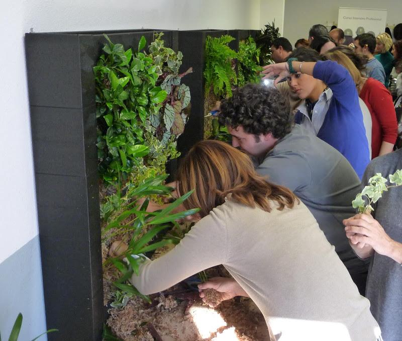 Curso de jardiner a vertical v deo y anuncio de futuros for Escuelas de jardineria en barcelona