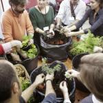 Curso de jardines verticales en Madrid – Todo un éxito