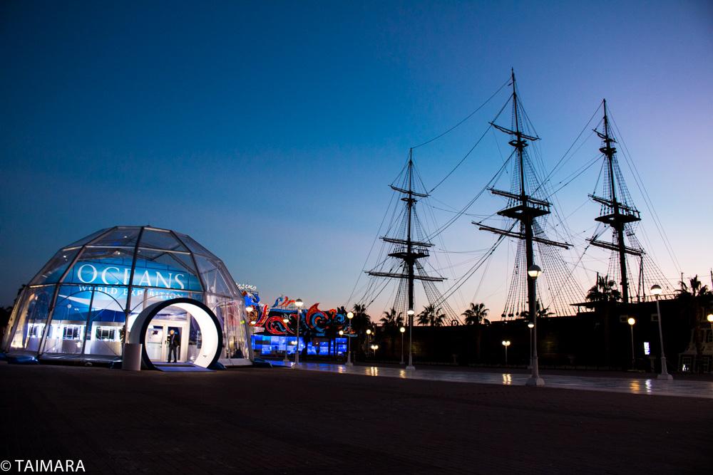 Oceans World Exhibition, fascinación por la naturaleza y los océanos en Alicante