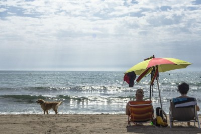 doggy beach 2- Playa Aguamarga Alicante