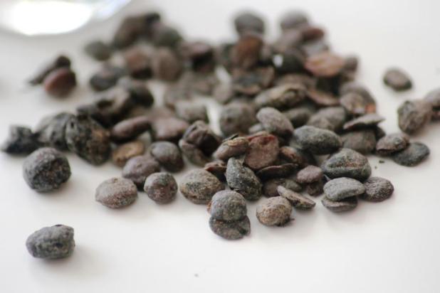 Le Netetou condiment traditionnel d'Afrique de l'Ouest